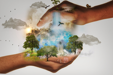 Business Ethics vs. Corporate Social Responsibility: What's the Difference?